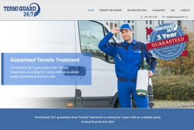 website_design_examples_termiguard