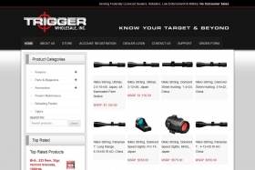 website_design_examples_trigger